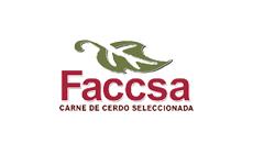 Faccsa